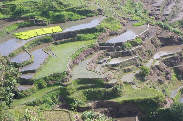Arial view of rice terraces in the Philippines
