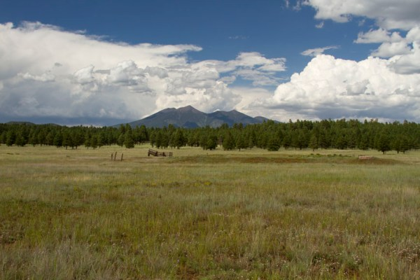 Image of a Meadow with trees in the distance and a set of mountains