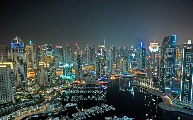 Image of the city of Dubai at night on the coast of the UAE