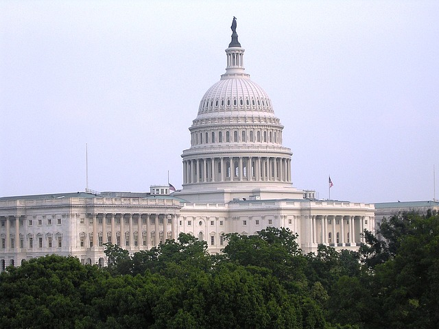 Image of the capital building
