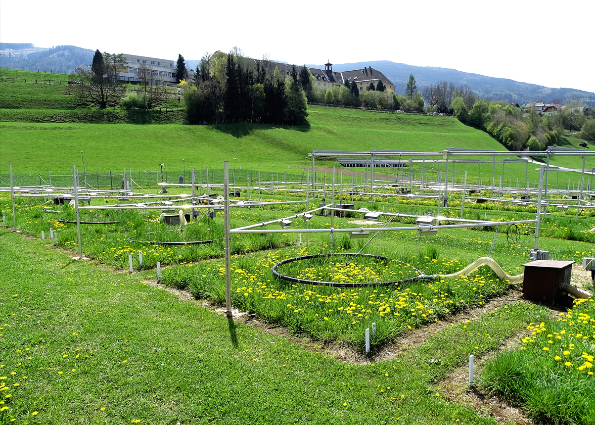 Picture depicting a Lysimeter plant in a garden with a CO2 fumigation facility located in Austria