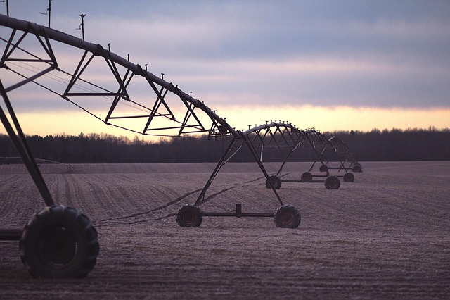 Irrigation lines in a field