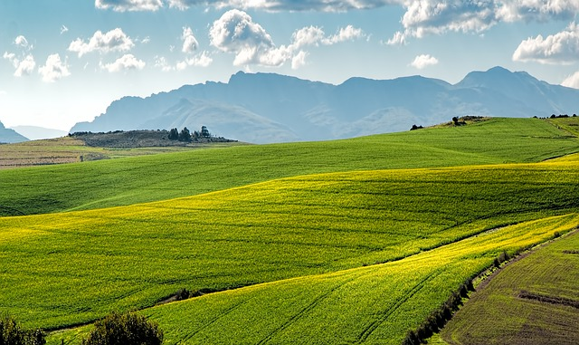 Image of rolling fields in front of mountains