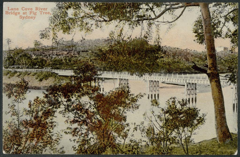 August Environmental History courses at WEA Sydney