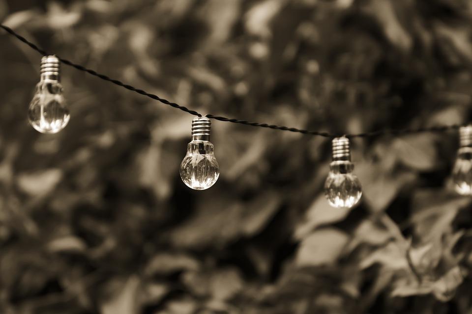 CFP: New Environmental Thinking