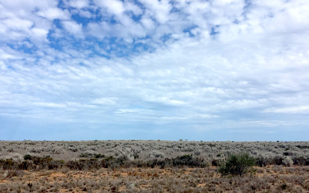 CFP: Southern Deserts – History, Change, and the Future A Humanities-Based Approach to the Deserts of Australia
