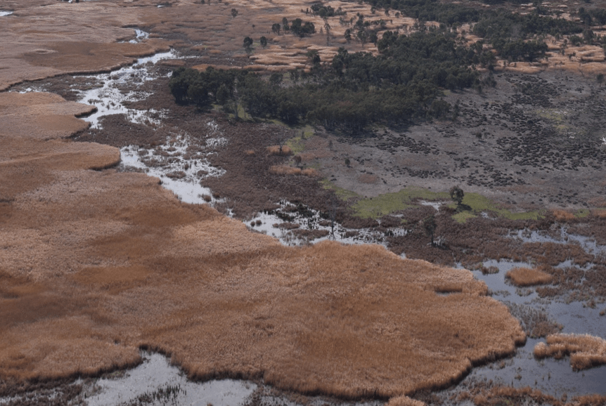 CFP: Wetlands in Drylands