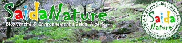 Réseau Saida Nature
