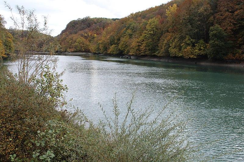 Haut-Rhône franco-suisse : un nouveau plan piscicole efficace