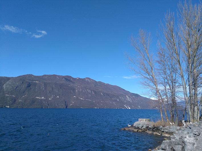 Biodiversité : les micro-organismes des lacs fortement impactés depuis un siècle