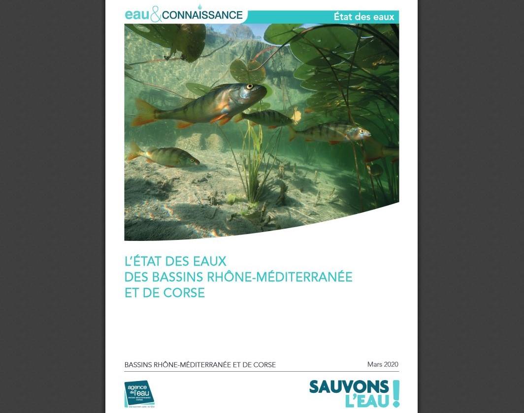 La qualité des eaux continue à s'améliorer dans le bassin du Rhône