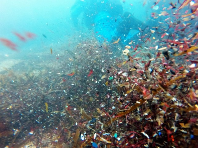 A cloud of microplastics whirls under the waves