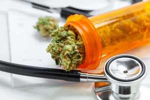 Cannabis Legalized Environmental Standards Shane Penn