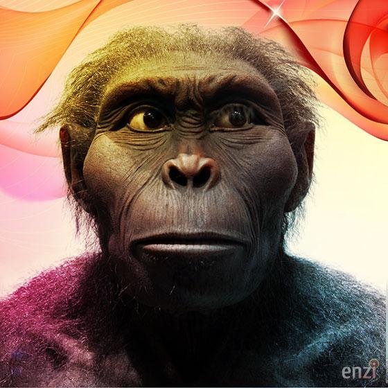Kenyanthropus Platyops Enzi
