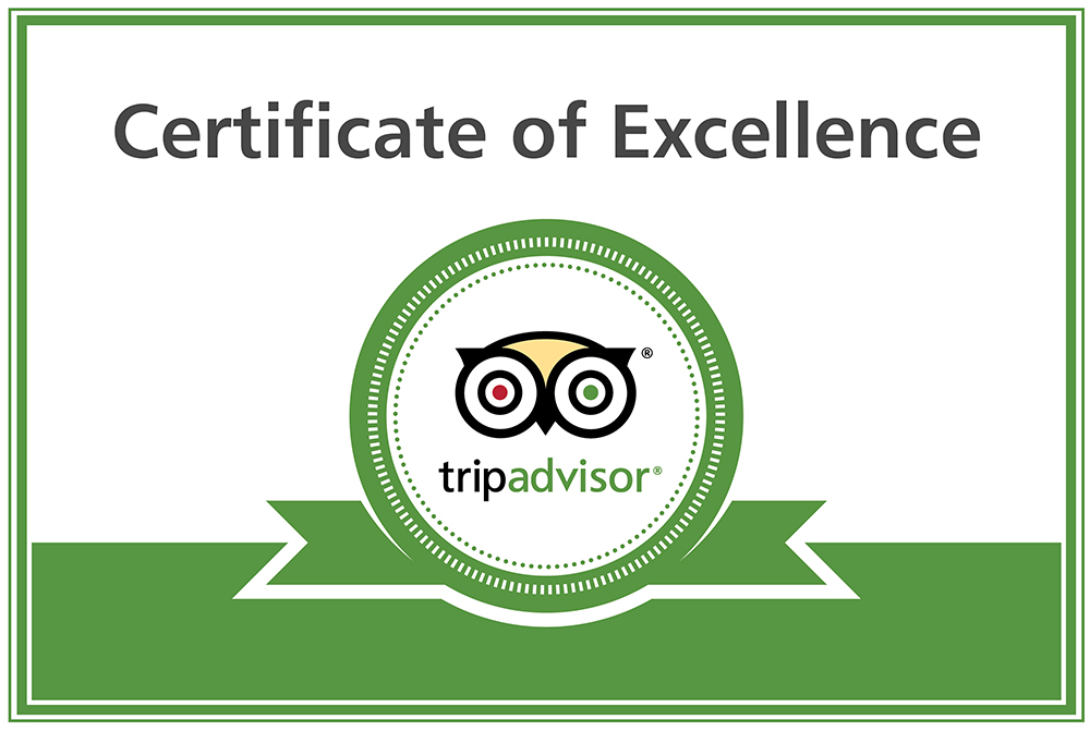 certificate of excellence 2016 | tripadvisor – everything on a stick