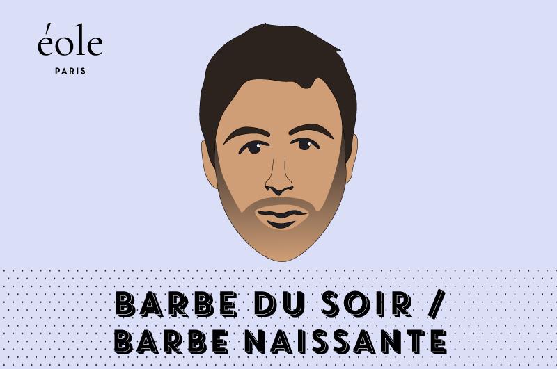 Barbe Du Soir - EOLE PARIS