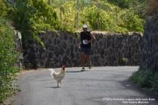 Foto Terza Tappa Salina - 17° Giro Podistico delle Isole Eolie - 156