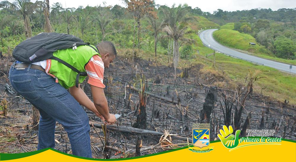 Incendio Forestal (2)