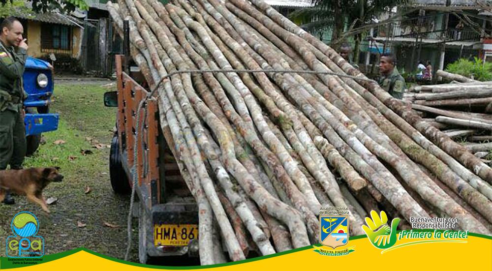 Incautación de madera (2)