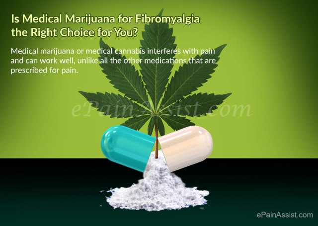 Is Medical Marijuana for Fibromyalgia the Right Choice for You?