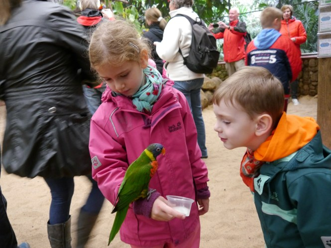 Kids feeding lories in the Weltvogelpark Walsrode