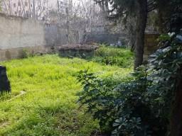 Jardin de la maison – 03/03/2017