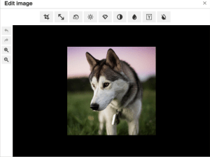 Image Tools editing dialog