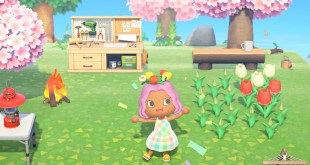 Animal Crossing New Horizons Beginner Tips