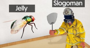 SLAP The ANNOYING FLY To WIN! (Annoying Game)