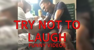 Try Not to Laugh || Funny Videos