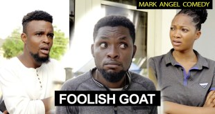 Foolish Goat | Funny Videos | Mark Angel Comedy