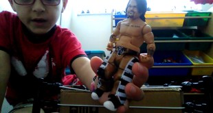 WWE Toy collection