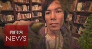 Manga artist Hajime Isayama reveals his inspiration - BBC News