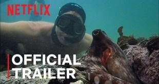 My Octopus Teacher | Official Trailer | Netflix
