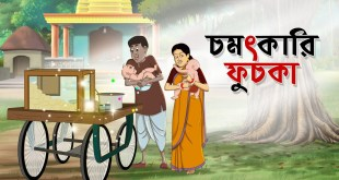Chomotkari Fuchka | Notun Bangla Golpo | Mojar Golpo | Magical Cartoon | Golpo | Ssoftoons Animation
