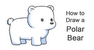 How to Draw a Polar Bear (Cartoon)