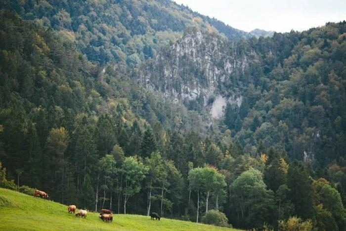 Destination wedding photography Switzerland_0007.jpg