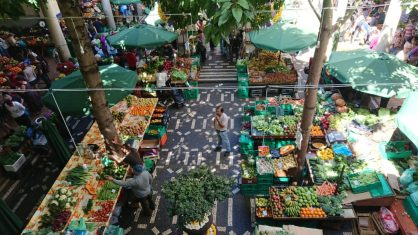 Fresh fruits at the Madeira Framers Market