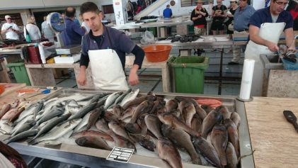 Fresh fish at the Madeira Framers Market