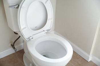 protect the body against irritable bowel disease