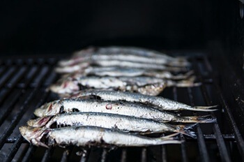sardines are great source of vitamin b12