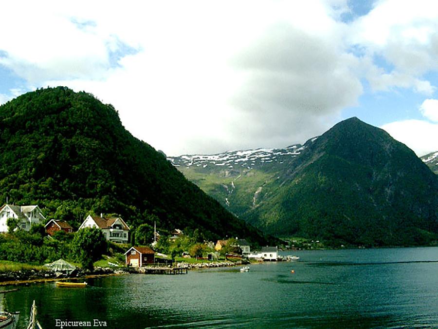 Fjords-web