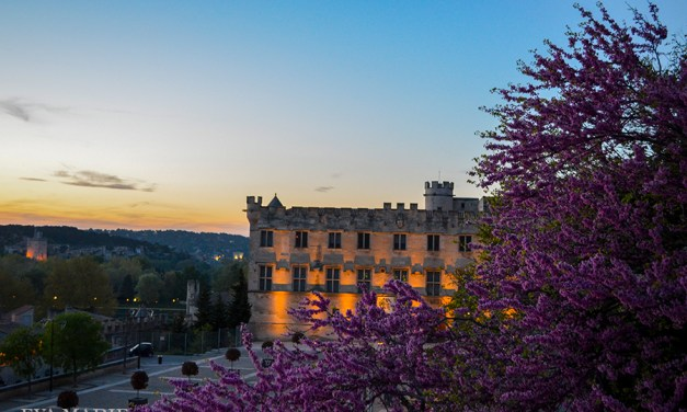 France: Vence and Avignon
