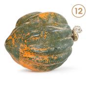 Acorn Squash Image