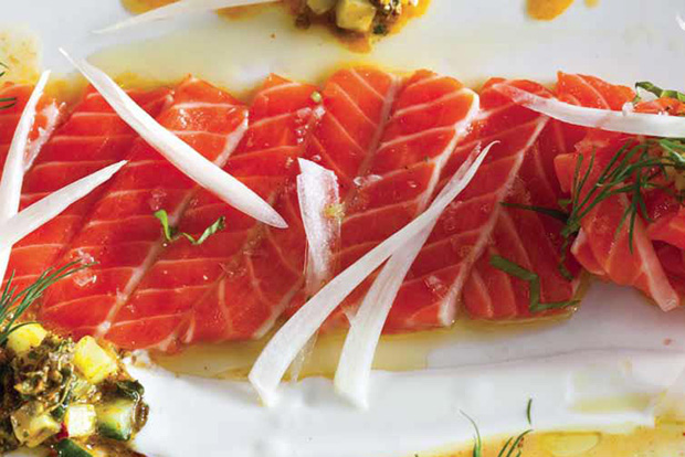 Moroccan Salmon Crudo with Yogurt recipe