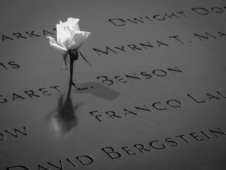 Stock 9/11 Memorial image of rose