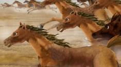 """""""Milhares de cavalos galopando e avançando"""""""