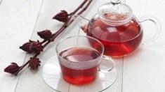 Chá de hibisco: ótimo para perder peso, aliviar inflamações e diminuir a pressão arterial
