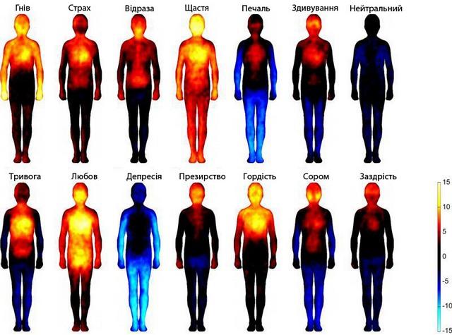 Карта емоцій на тілі людини, складена фінськими дослідниками. Фото: Університет Аалто