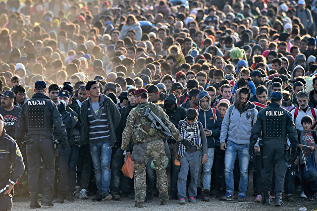Migranten werden von der Polizei durch die Felder in Richtung einer Haltelager im Dorf Dobova begleitete, Slowenien, am 26. Oktober 2015. Foto: Jeff J Mitchell / Getty Images